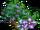 Big Star Flower Tree