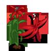 Cardinal Flower-icon