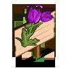 Purple Tulip Mastery Sign-icon