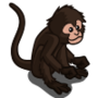 Spider Monkey-icon