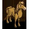 Java Pony-icon