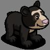 Andean Bear Cub-icon