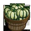 Dumpling Squash Bushel-icon