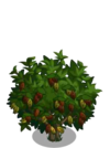 Giant Cocoa Tree2-icon