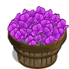 Purple Poppy Bushel-icon