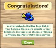 Jade Aquarium Finished Reward