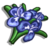 Rosemary-icon