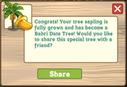 Bahri Date Tree Growth Message