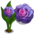 Purple Primrose-icon