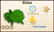Shiso Market Info