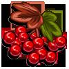 Cove Cranberry-icon