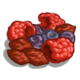 Dried Berries-icon