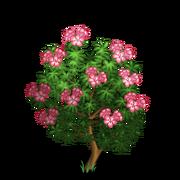 Alpenrose Tree-icon