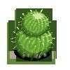 Ball Cactus-icon