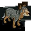Gray Heeler-icon