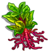 Madder Root-icon