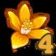 Orange Flowers-icon