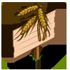 Triticale Mastery Sign-icon