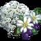 Dogwood Tree (tree)-icon