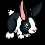 Dutch Rabbit-icon