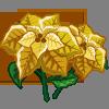 Golden Poinsettia-icon