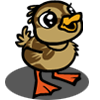 Brown Duckling-icon