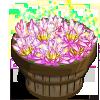 Mystical Lotus Bushel-icon