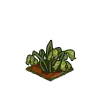 Wither Bunch Red Clover-icon