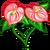 Ardour Anthurium-icon