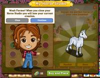 My Horse Studio Warning