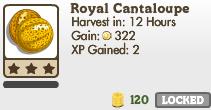 Royal Cantaloupe Market Info