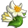 Blood Root-icon