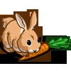 Carrot Bunny-icon