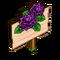 Dark Dahlia Mastery Sign-icon