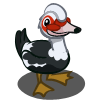 Muscovy Duck-icon