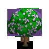 Rock Jasmine Tree-icon