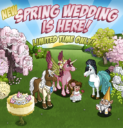 Spring Wedding Event (2013) Loading Screen