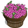 Stallion Flower Bushel-icon