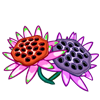 Abandoned Lotus Pods-icon