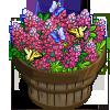 Pink Buckeye Bushel-icon