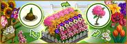 Blooming Garden Notification