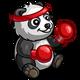 Boxer Panda-icon