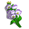Lisianthus-icon