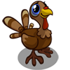 Baby Turkey-icon