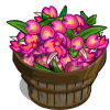Hawaiian Orchid Bushel-icon