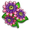Passion Shrub-icon