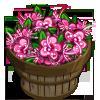 Pink Myrtle Flower Bushel-icon