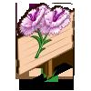 White Dianthus Mastery Sign-icon