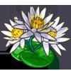 Galungan Flower-icon