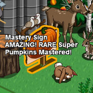 SuperPumpkin-MasterySign2
